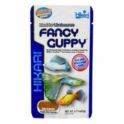 Hikari - Fancy Guppy