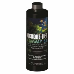Microbe-Lift - Algaway (Fresh and Saltwater)