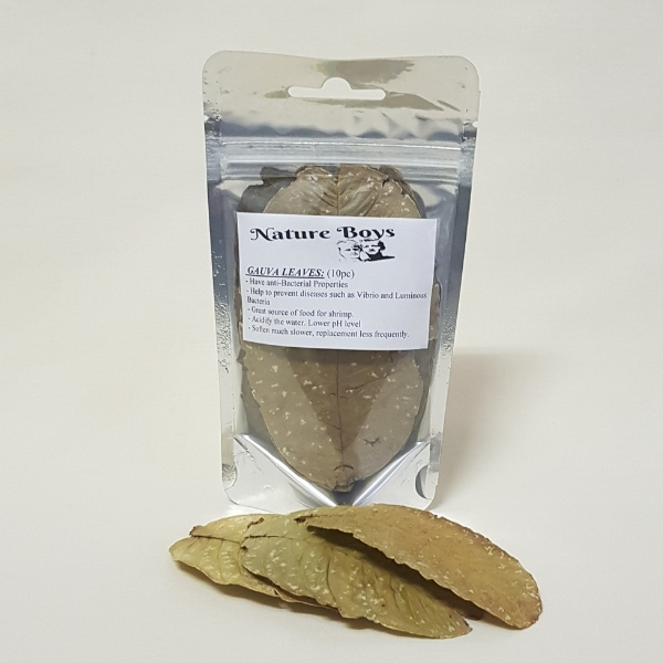 Nature Boys Guava Leaves