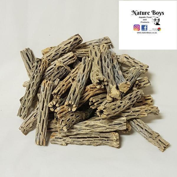 Nature Boys Cholla Wood