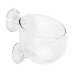 Aquarium Glass Plant Cup